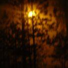 Foggy in Red by thorskar