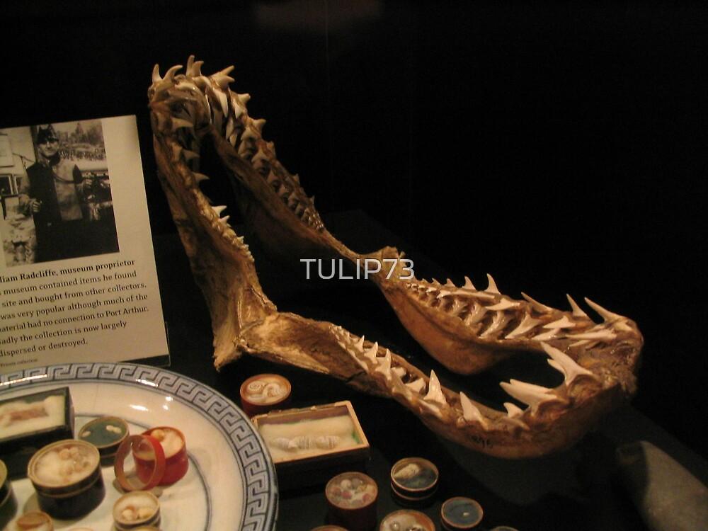 PORT ARTHUR HISTORICAL SITE by TULIP73