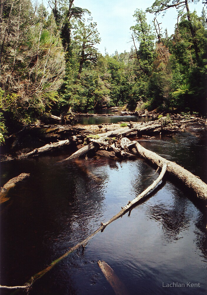 Styx River by Lachlan Kent