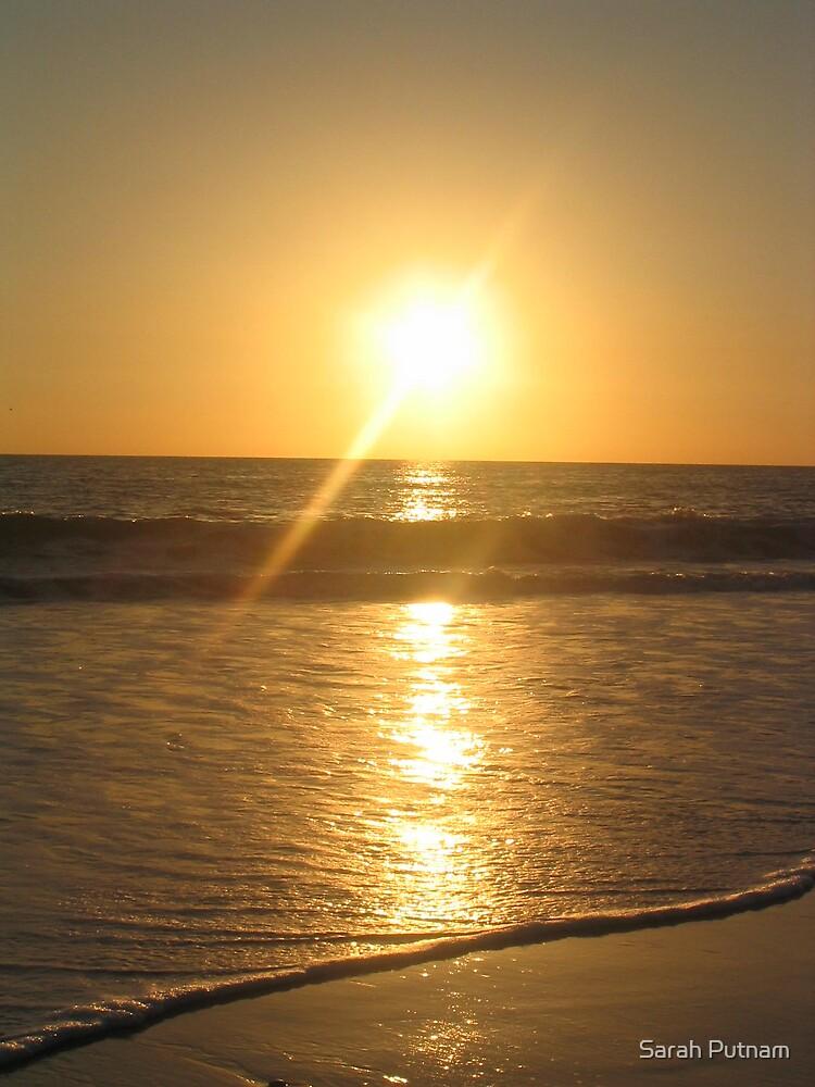 Golden Sun by Sarah Putnam