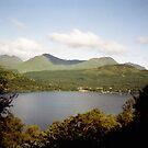 Loch Lomond - beyond the trees by georgiegirl