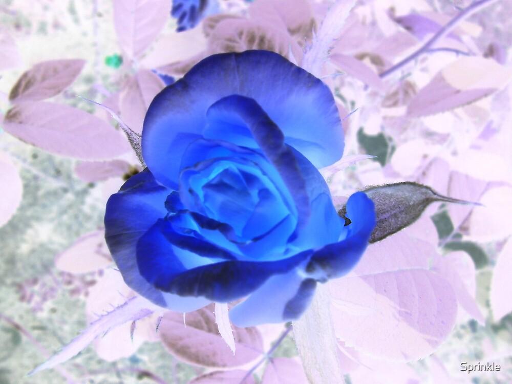 Spooky Blue by Sprinkle