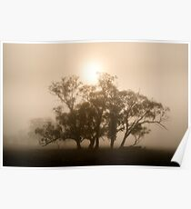 On fire in the fog - Tongala, Victoria, Australia Poster