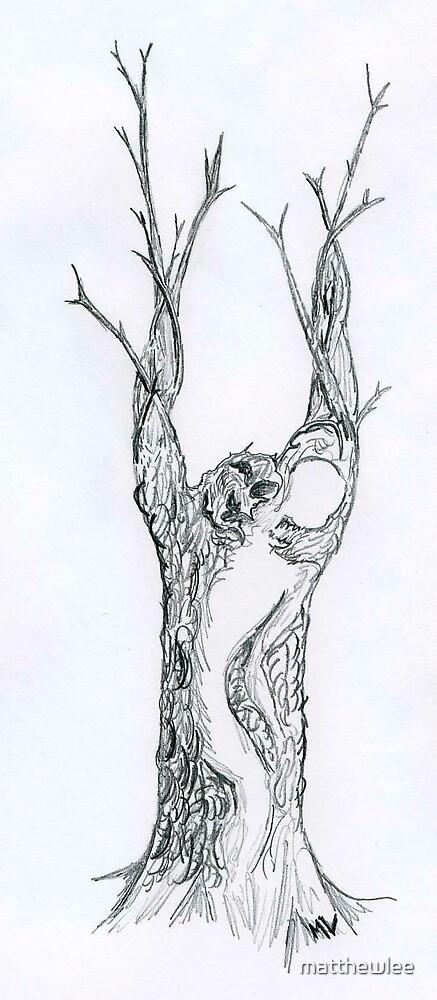ghost tree by matthewlee