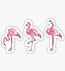 Cute graphic flamingo  Sticker