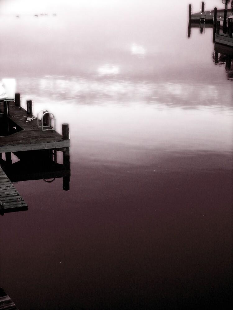 Quiet Time by Susan Zohn