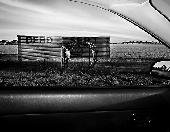 Dead Sert by GCPhoto