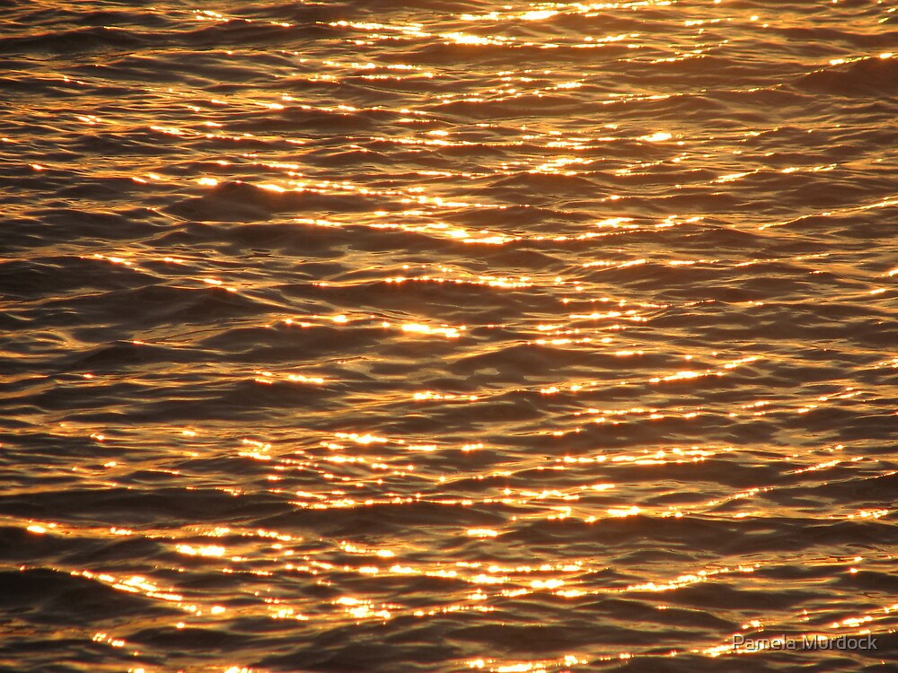 Florida Water with Sunset Reflection by Pamela Murdock