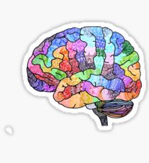 The Rainbow Brain  Sticker