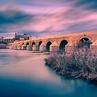 Sunset at the Roman Bridge of Cordoba by Ralph Goldsmith