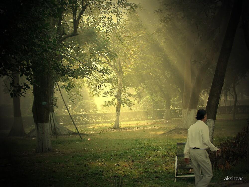 Morning rays by aksircar