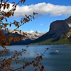 Autumn in the Canadian Rockies  by dmacneil