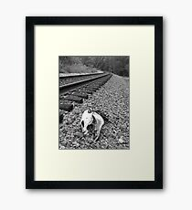 Death by the Tracks Framed Print