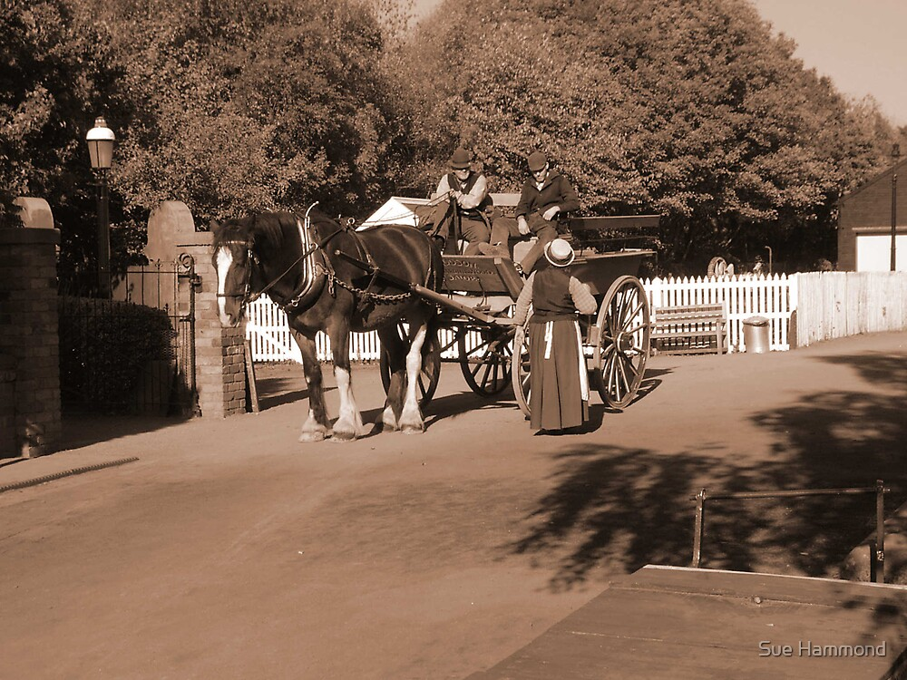 Horse and Cart by Sue Hammond
