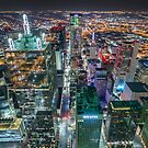 Downtown Dallas From Bank Of America Plaza Rooftop by josephhaubert