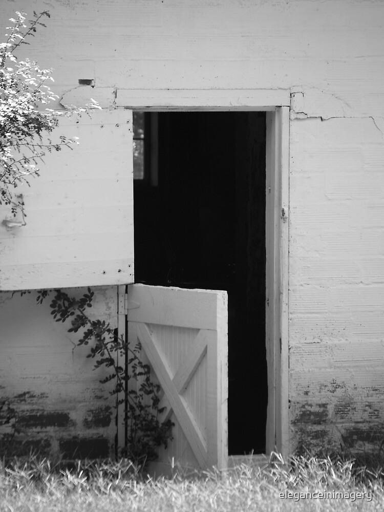 Barn Door by eleganceinimagery