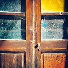 Rotten wooden door detail by Silvia Ganora