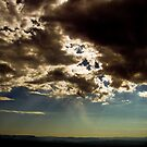 Morning Light by lattermanstudio