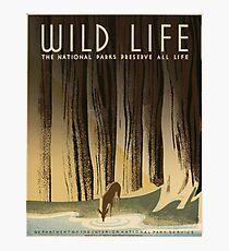 Vintage National Park Poster - Preserve Wildlife (1940) Photographic Print