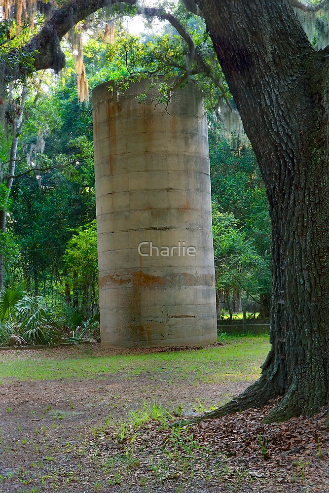 Empty Silo by Charlie