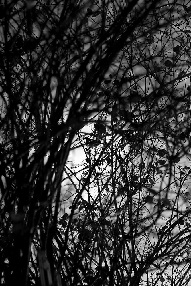 Unravel me by Jodie Noonan