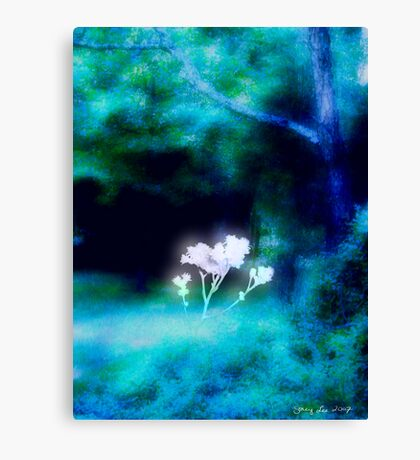 Hope Blooms Canvas Print