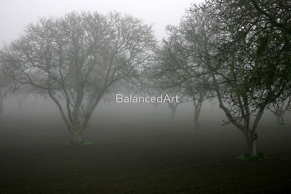 Tree fog by BalancedArt
