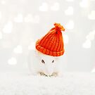Tiny Red Hat by Indea Vanmerllin