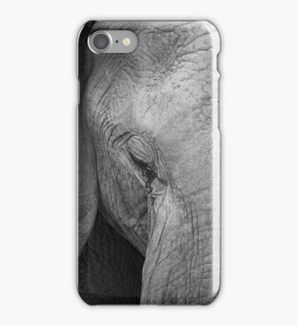African Elephant Close-up iPhone Case/Skin