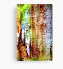 Bark: Nature's Pallet Canvas Print