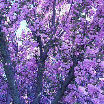 Purple Aesthetic Flowers by emdizio