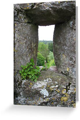 Blarney Castle by Splogy