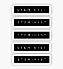 STEMINIST 5 stickers Sticker