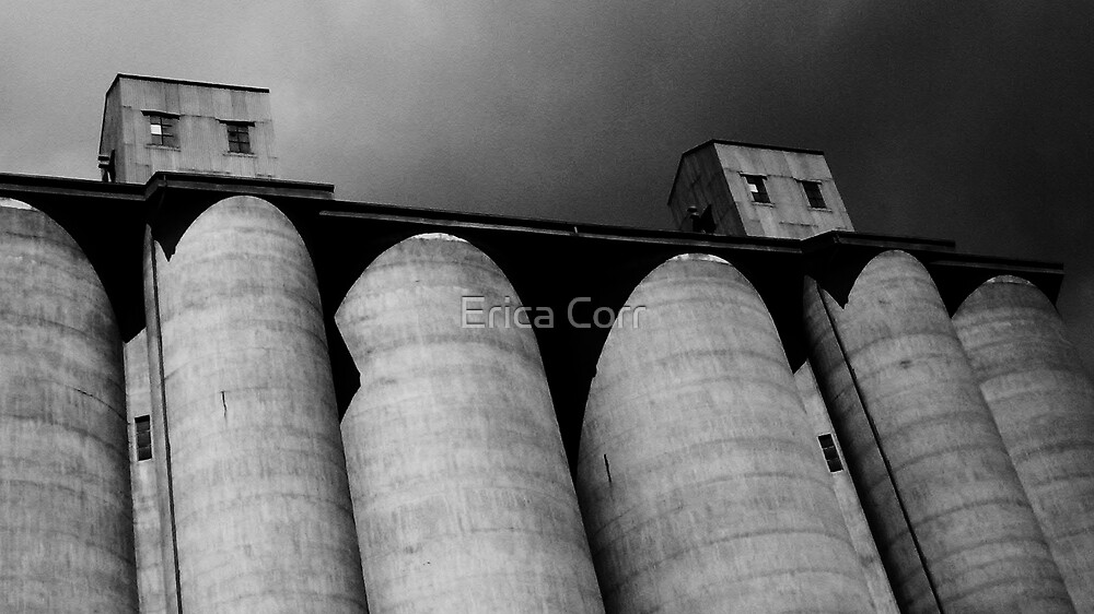 Waiting for Grain by Erica Corr