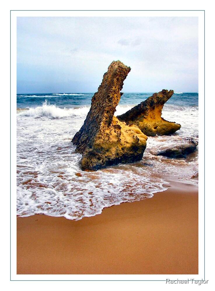 Gibson's Beach by Rachael Taylor