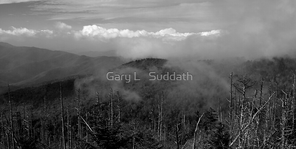 In The Clouds by Gary L   Suddath