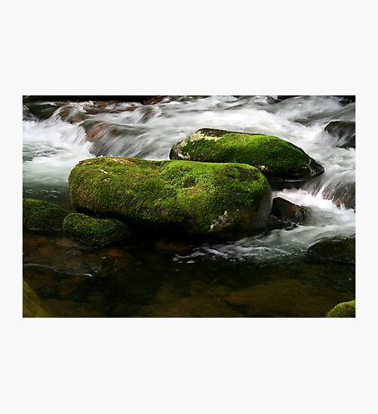 Pristine Waters Photographic Print
