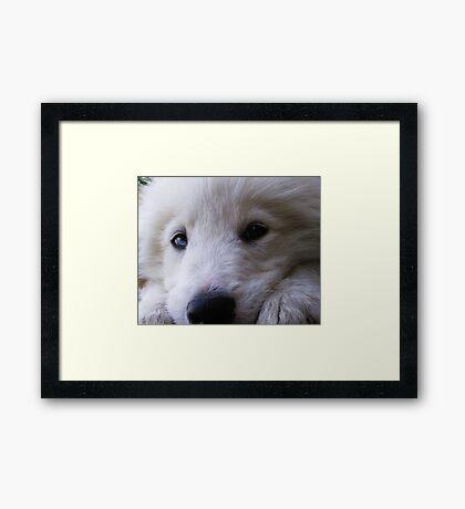 LOVE ME ? Framed Print