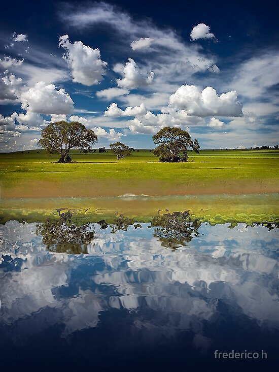reflection by frederico h