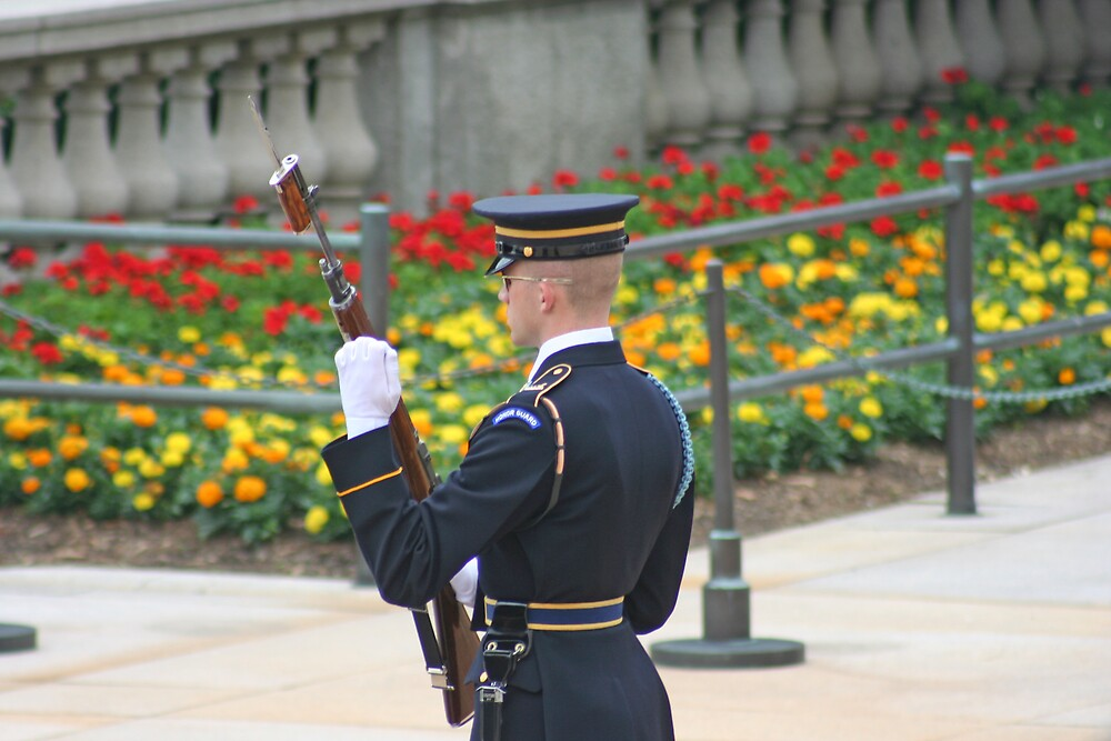 Guarding The Memory Of The Unknown Soldier by sskobel