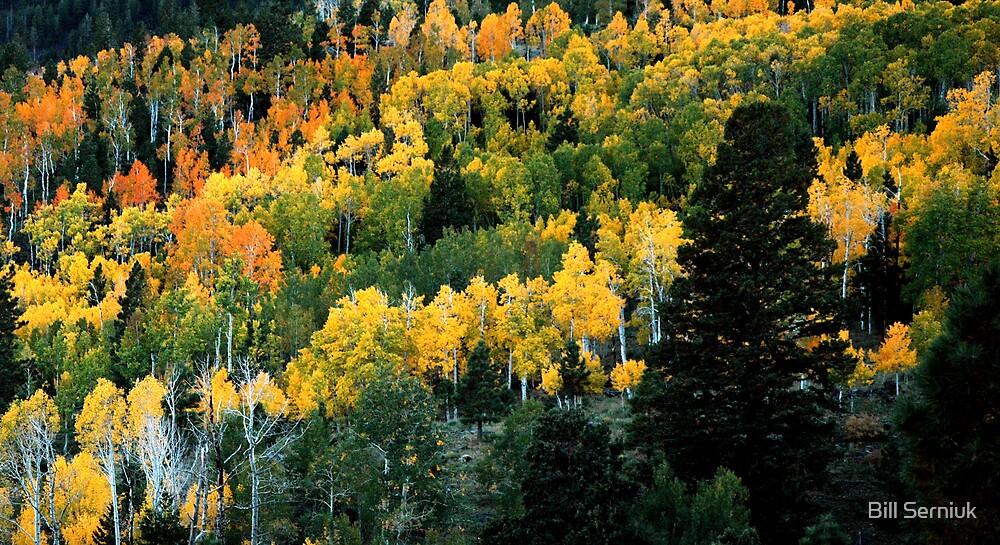 Utah Autumn by Bill Serniuk