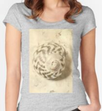 Vintage seashell still life Women's Fitted Scoop T-Shirt
