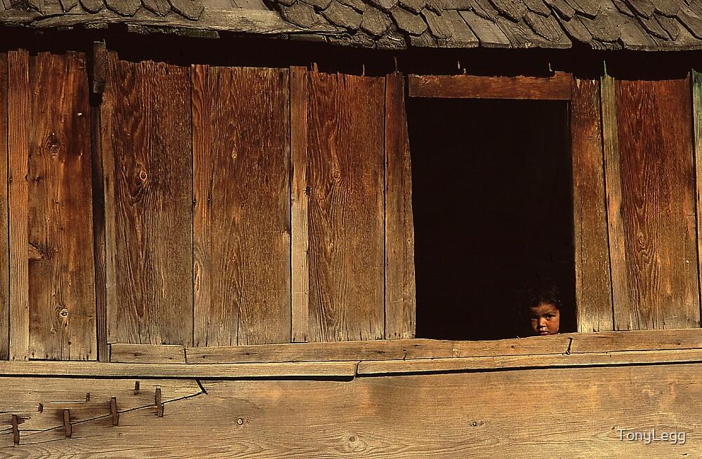 Girl, bug & Houseboat ,,,,, Kashmir by TonyLegg
