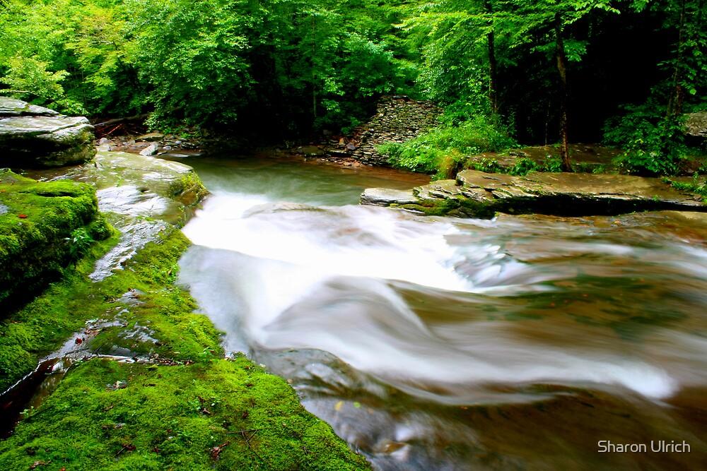 Corbett Falls by Sharon Ulrich