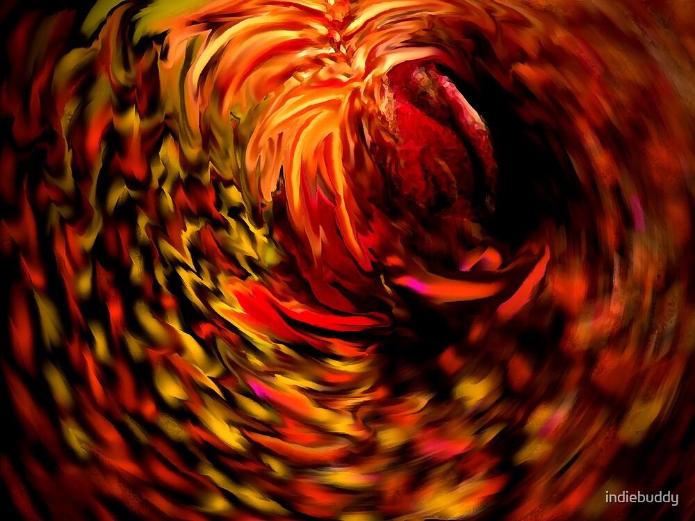 Fizzy Phoenix by indiebuddy