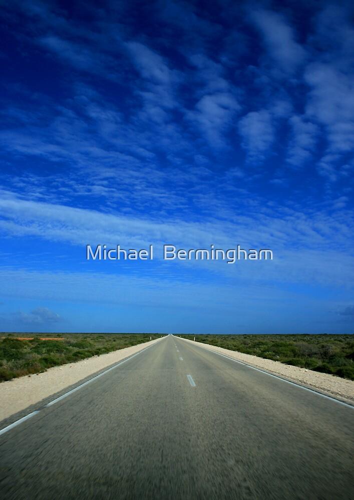 Nullarbor by Michael  Bermingham