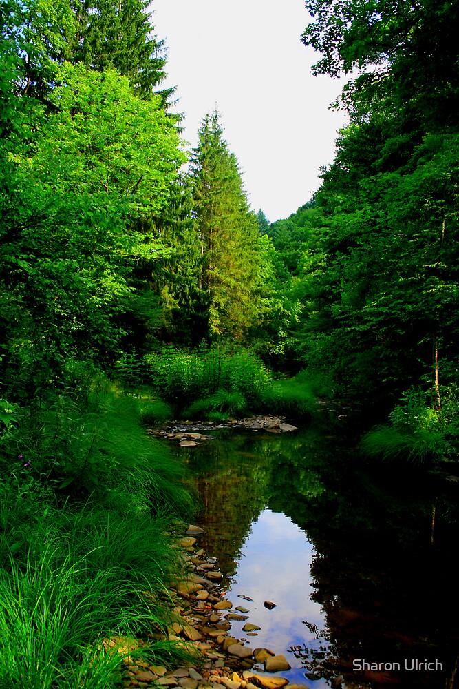 Downstream by Sharon Ulrich