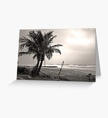 Lonely Palms Greeting Card