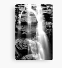 Sheoak falls Victoria Canvas Print