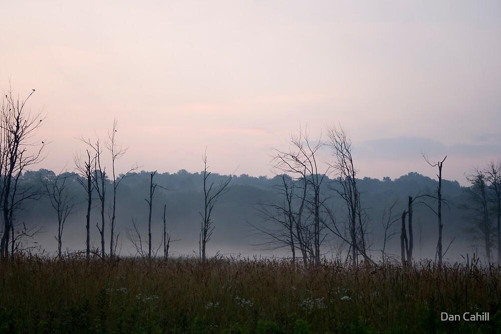 Crack Of Dawn by Dan Cahill